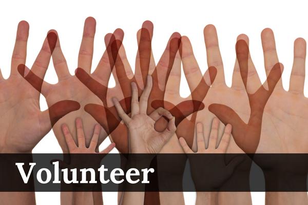 Link: Volunteer