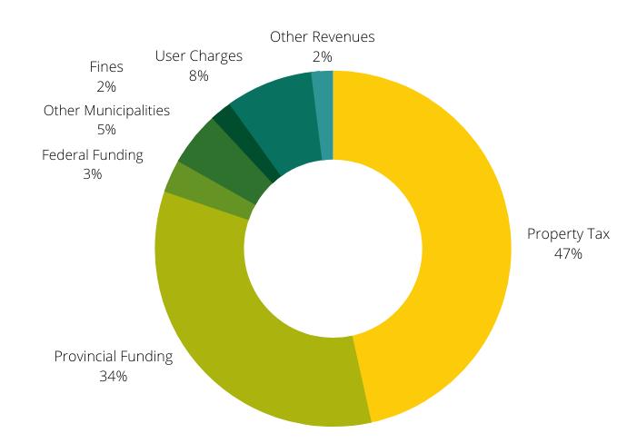 2020 Revenues Chart