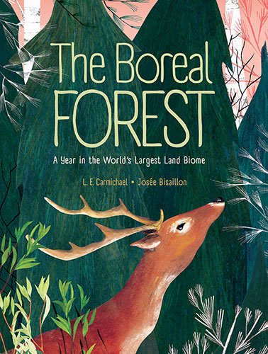 Yellow-Cedar-01-Boreal-Forest